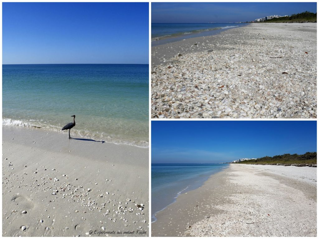 Florida - Fort Myers Beach - Barefoot Beach {EamK on Tour}