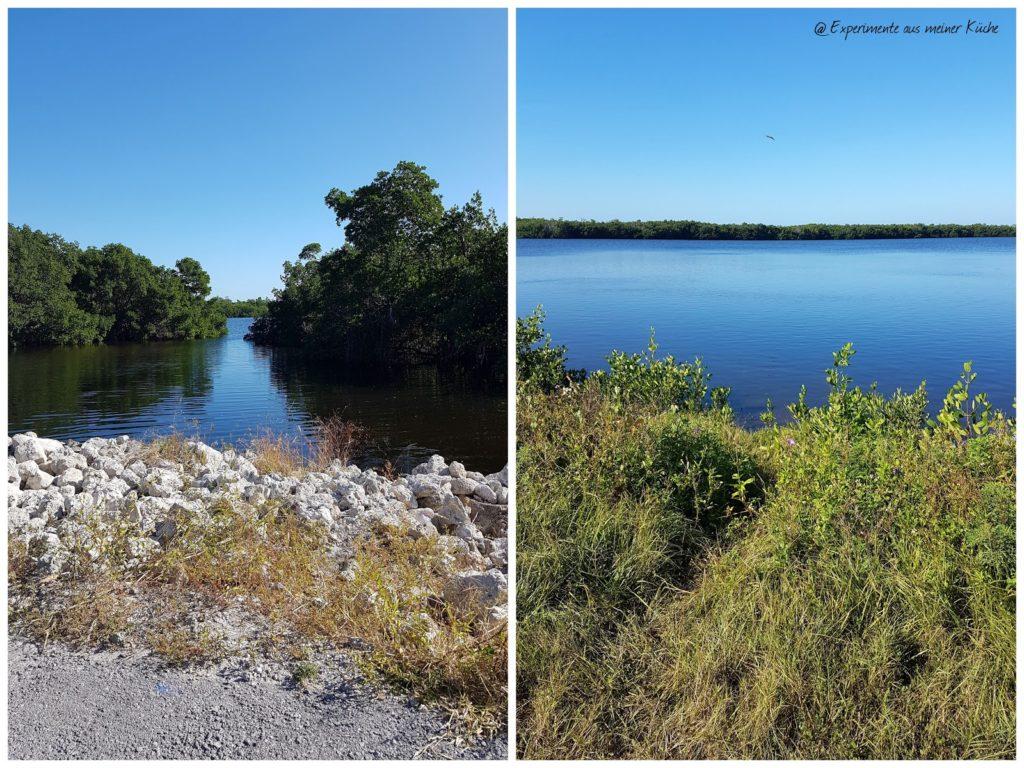 Florida - Fort Myers Beach - J.N. Ding Darling National Wildlife Refuge {EamK on Tour}