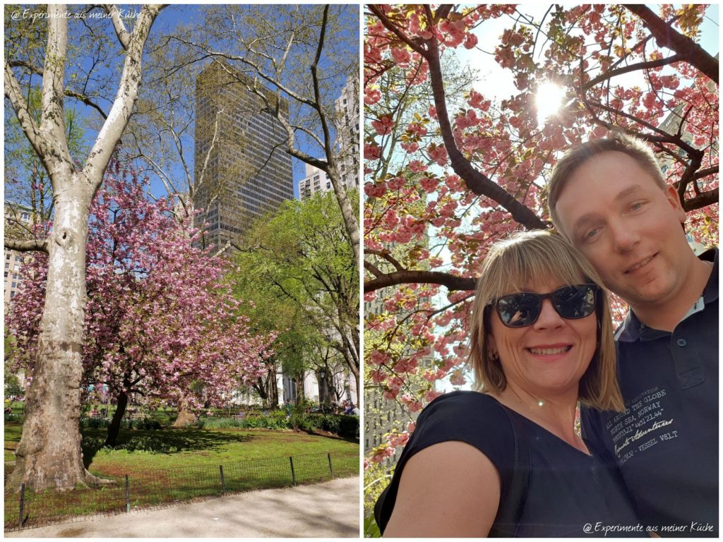 New York  - Midtown Manhattan | Reisen | USA | Städtetour | Citytrip | Madison Square Park